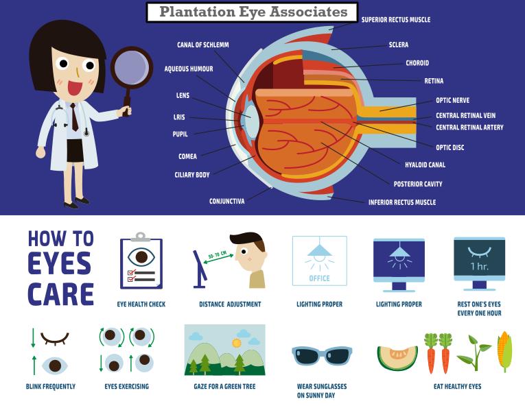 Plantation Eye Associates Eye Care Contact Lenses